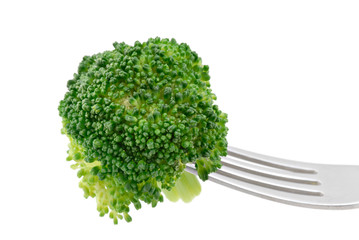 A broccoli floret on a fork isolated against a white background.