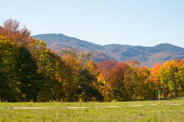 Vermont Landscape autumn