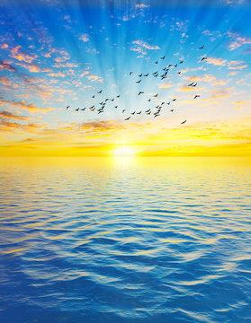 paisaje vertical del amanecer en el oceano