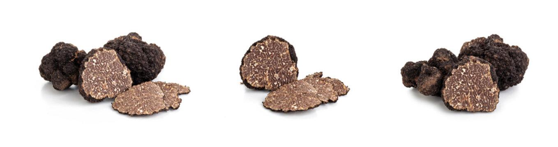 Black truffles and oak leaves.