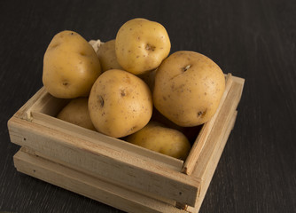 Creole potato or yellow potato (Solanum phureja)