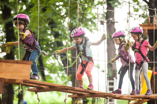 The obstacle course in adventure park