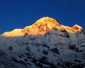 Foto op Plexiglas Ochtendgloren Morning view of Mount Annapurna south