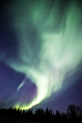 swirling northern lights