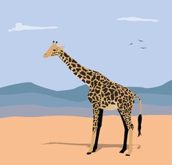 vector illustration of giraffe and hills in the background