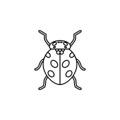 ladybug icon. Insect world elements icon. Premium quality graphic design icon. Simple line icon for websites, web design, mobile app, info graphics