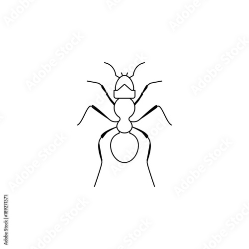 ant icon  Insect world elements icon  Premium quality