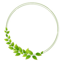 Wreath of fresh green leaves. Tree branches round frame. Decor for invitations and greeting cards.