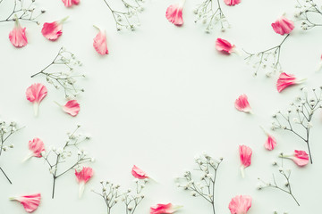Petal flower on white background with copy space.Flat lay.Valentines,love and wedding concept