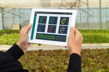 Wall Mural - iot smart industry robot 4.0 agriculture concept,industrial agronomist,farmer using tablet to monitor, control the condition in vertical or indoor farm ,the data including Ph, Temp, Ic, humidity, co2