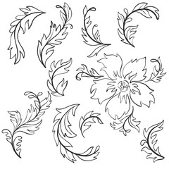 vector baroque pattern elements