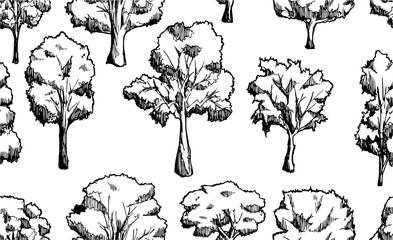 Vector Background Seamless pattern with hand drawn Tree doodle eps10