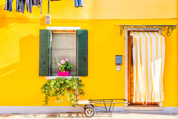 Yellow house with flowers and plants. Colorful houses in Burano island near Venice, Italy. Wall mural