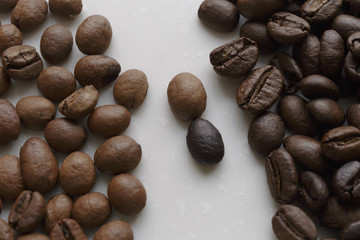 Coffee beans of different roasting on white background. Full Frame Shot of Roasted Coffee Beans.