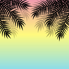 Vector summer background with black palms on the sides.