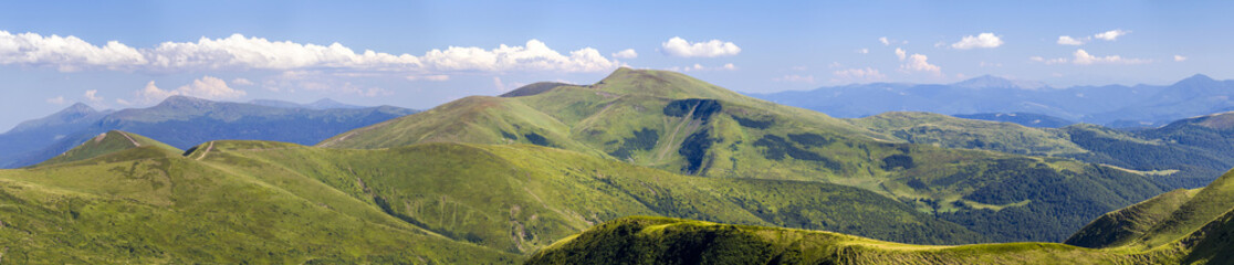 Wide panorama of green mountain hills. Carpathian mountains in summer.