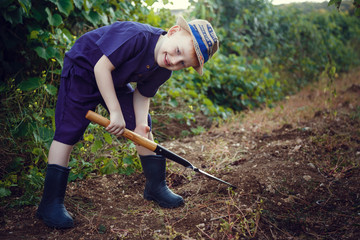 Lovely red-haired boy with freckles helps in the garden. The idea and concept of early schooling for work in the garden of children