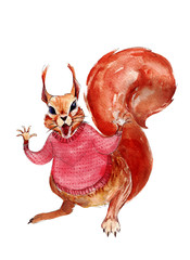 Squirrel in red sweater watercolor illustration, hand-drawn vintage isolated object on white background.