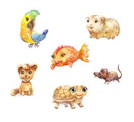 Watercolor pets, little cute illustrations suitable for children's goods' design