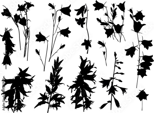 campula black flower silhouettes collection isolated on white