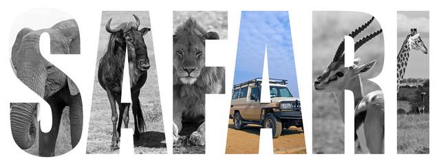 Safari letter concept