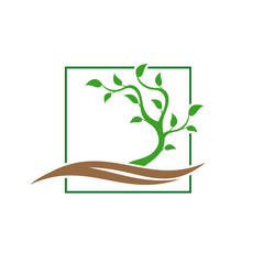 Tree logo template. Abstract young green tree.