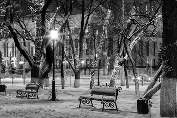 Winter park at night. Monochrome.