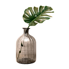 gray glass vase and big green leaf. isolated white background