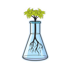 beaker with green plant vector drawing