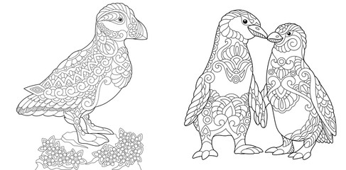 Coloring Page. Adult Coloring Book. Puffin, seabird of North Pacific and Atlantic Oceans. Emperor Penguins couple in love. Antistress freehand sketch collection with doodle and zentangle elements.