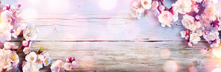 Foto op Canvas Retro Spring Banner - Pink Blossoms On Wooden Plank