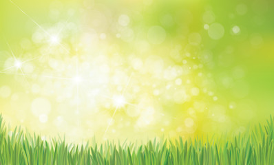 Vector spring  nature  background,  green grass on green bokeh background.