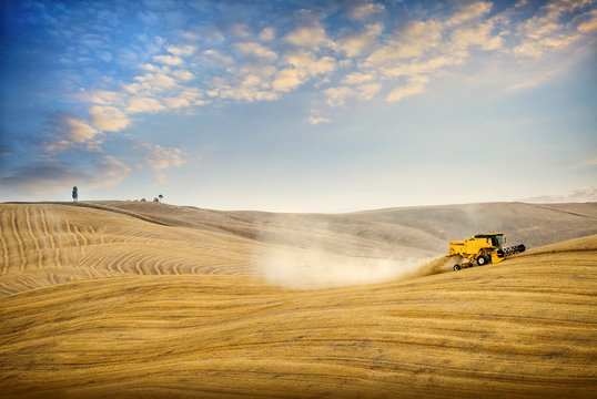 Val D'Arbia. Wheat harvest on the rolling Tuscan hills at sunset. Italy.