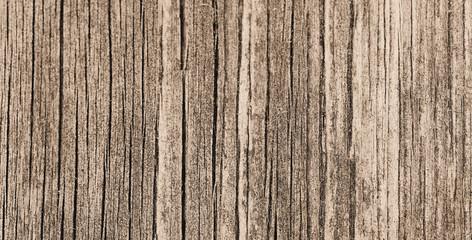 Holztextur alt in Sepia, altes Holz, Hintergrund, Copy Space
