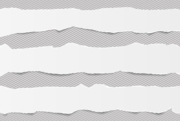 Pieces of torn white blank note, notebook paper strips stuck on gray squared background