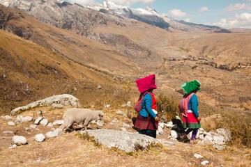 Quechua woman Indian and little sheep in Huaraz Peru