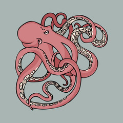 cute cartoon octopus pink tentacles