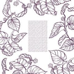 Invitation Card Template : Decorative Frame with Botanical Elements : Vector Illustration