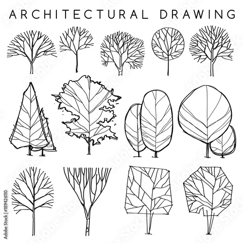 Set Of Architectural Hand Drawn Trees Vector Illustration Stock