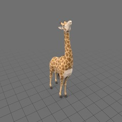 Stylized giraffe eating