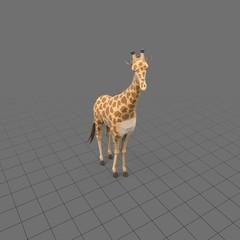 Stylized giraffe standing