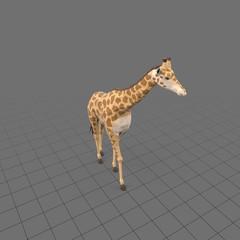 Stylized giraffe walking
