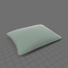 Green rectangle pillow