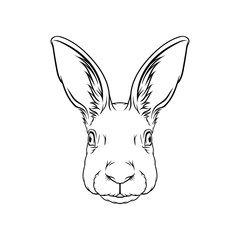 Sketch of hares head, portrait of forest animal black and white hand drawn vector Illustration