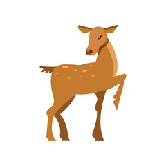 Fallow sika roe deer, wild animal cartoon vector Illustration