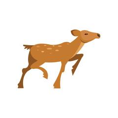 Fallow sika roe deer running, wild animal cartoon vector Illustration