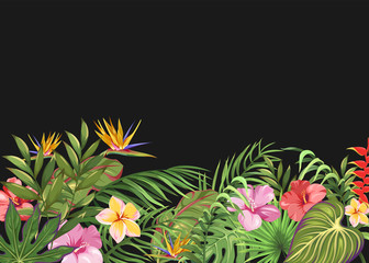 Dark background with tropical flowers and leaves