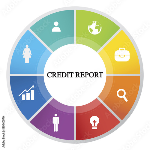 Pie Chart With The Inscription Credit Report