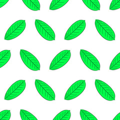 Seamless pattern from green leaf of plant from the contour black brush lines on white of vector illustration