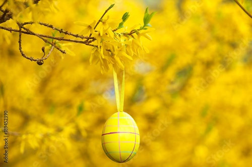 Easter Yellow Easter Egg Hanging On A Spring Branch With Yellow